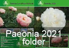R2 Flowers BV - Paeonia 2021 promo folder